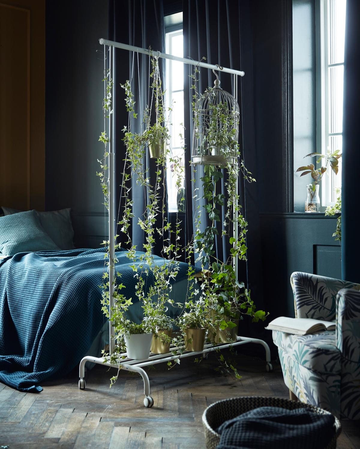 stena z rastlín
