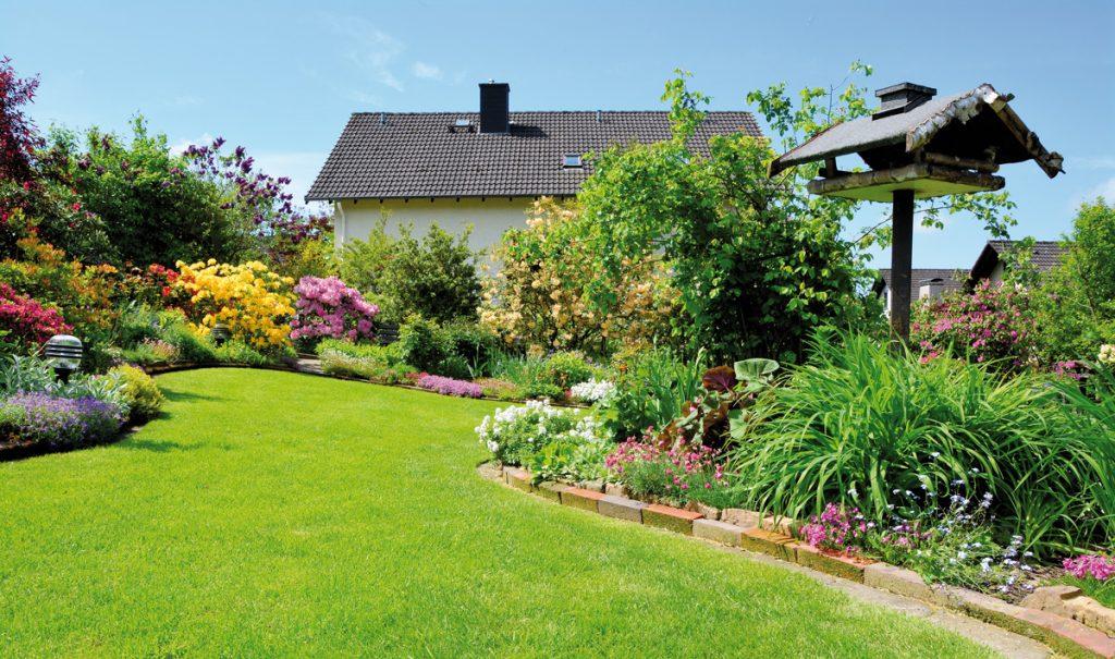 Plánovanie záhrady: 8 krokov kvysnívanej záhrade