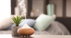 Zdravé bývanie: Optimálna vlhkosť vzduchu