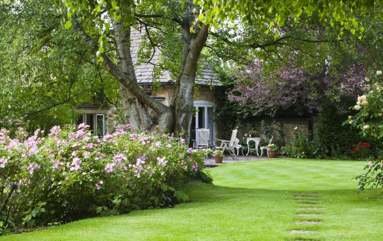 Tipy od záhradného architekta na výsadbu vidieckej záhrady