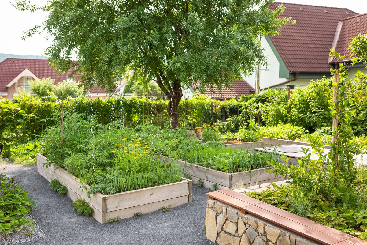 záhrada vo svahu