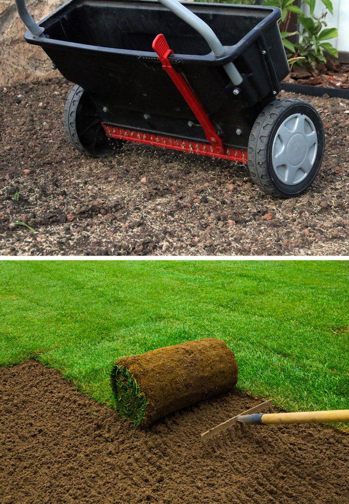výsev a zakladanie trávnika