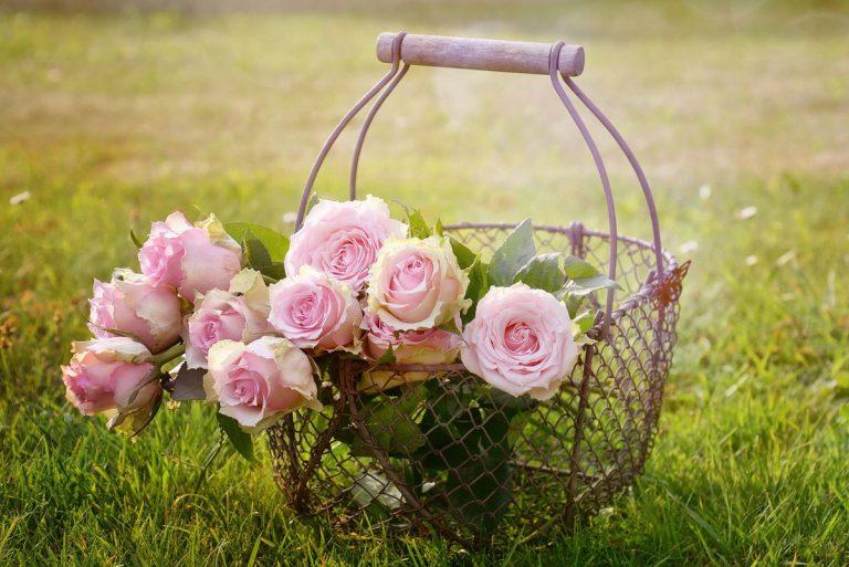 Ako sa postarať o okrasnú záhradu v apríli?