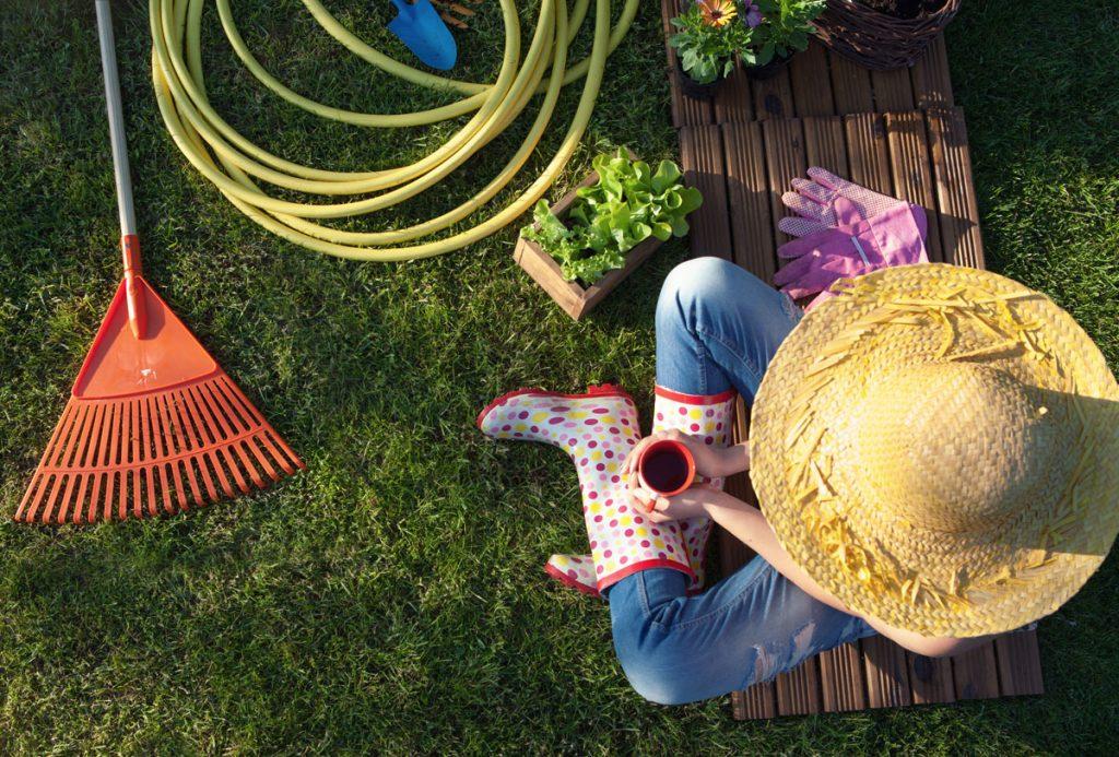júnové práce v záhrade