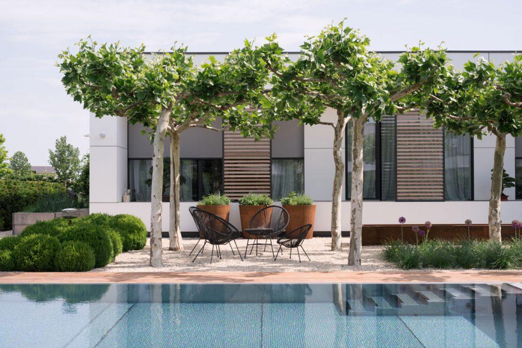 elegantná, minimalistická záhrada s bazénom a záhradným sedením pod stromami