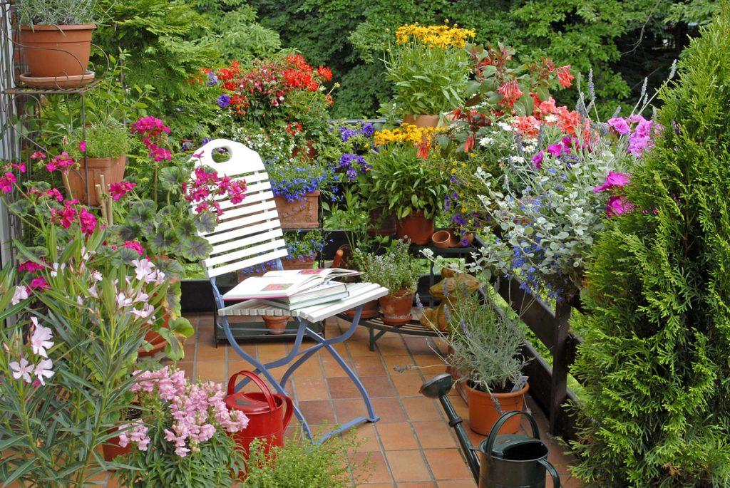 slnečná terasa s rôznymi druhmi kvetov
