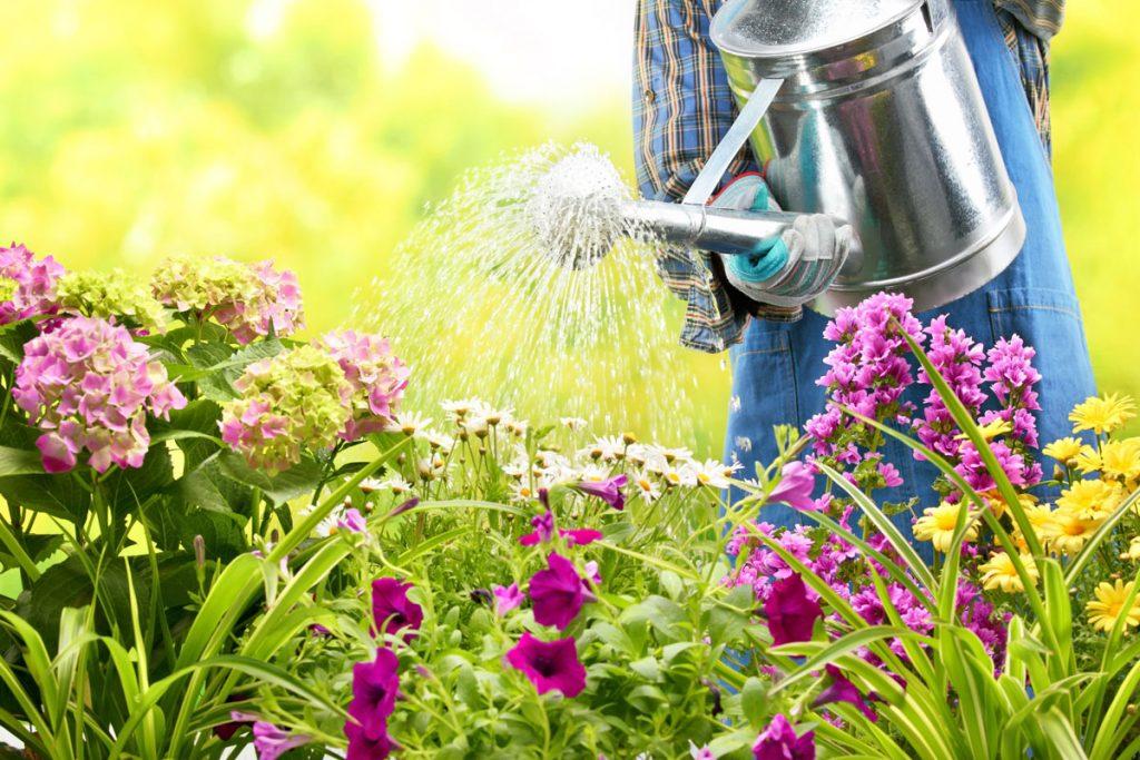 Leto zavíta aj do našich okrasných záhrad. Pripravte ich na toto obdobie!