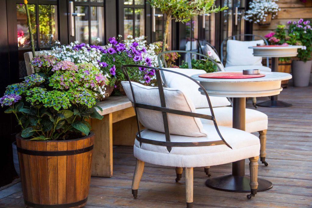 rastliny na tienistej terase