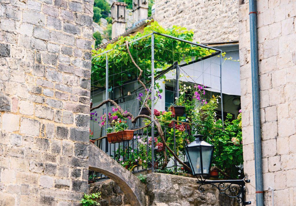 terasová železná pergola obrastená viničom a kvitnúcimi okrasnými rastlinami
