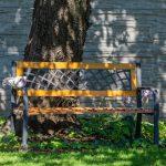 drevená lavička pod čerešňou