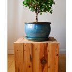 drevený podstavec s modrým keramickým kvetináčom