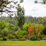 rovinatá záhrada s trávnikom a pestrým záhonom stromov a krov, ktoré vytvárajú súkromie