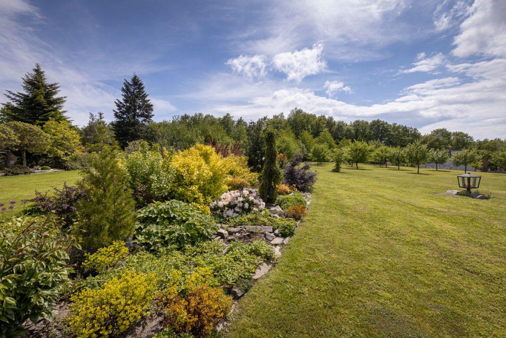 rovinatá záhrada s dlhým záhonom skladajúcim sa zo stromov, krov a trvaliek