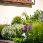 vyvýšený záhon s trvalkami v bielej, žltej a fialovej farbe a s okrasnými trávami