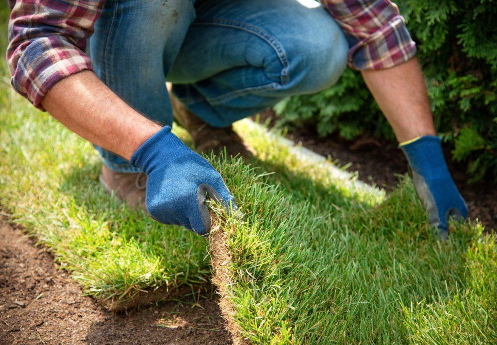 pokladanie kobercového trávnika