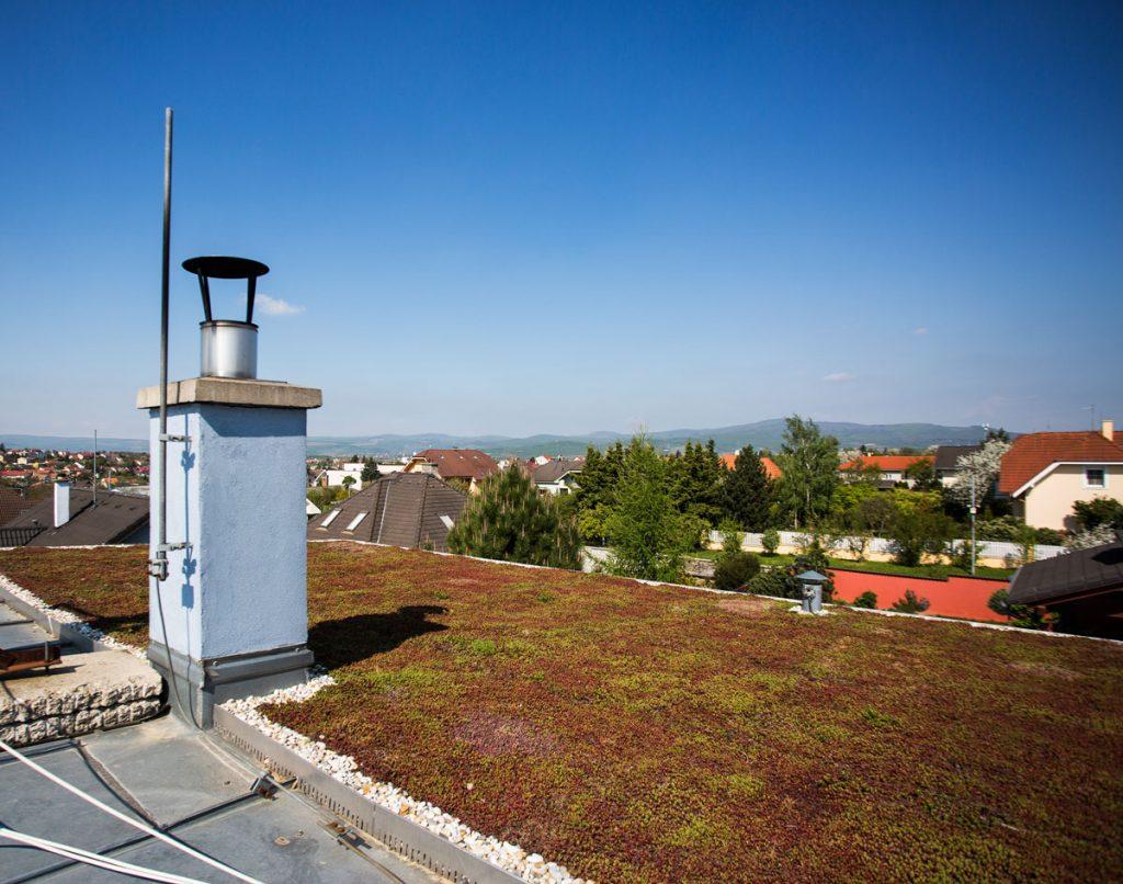 zelená strecha na pasívnom dome