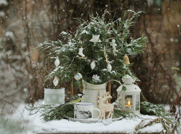Doprajte si vianočnú atmosféru aj v záhrade