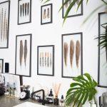 stena s obrazmi rôznych vtáčích pierok