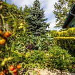 rodinný dom so zeleninovou záhradkou