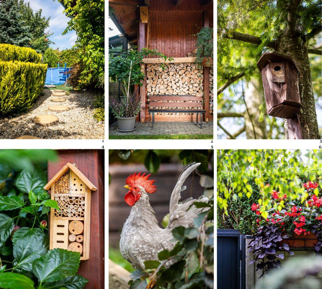 rôzne detaily okrasnej záhrady, kvetináče s trvalkami na betónovom plote, domček pre hmyz, búdka pre vtáčiky, zátišie s drevom na kúrenie a drevenou lavičkou, kamenistá cesta s guľatinou vedúca ku bazénu a sliepka chabo