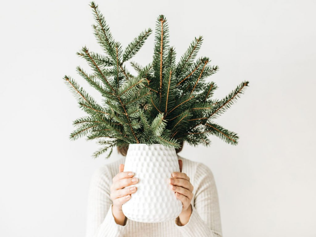 žena drží vázu s vianočnou čečinou