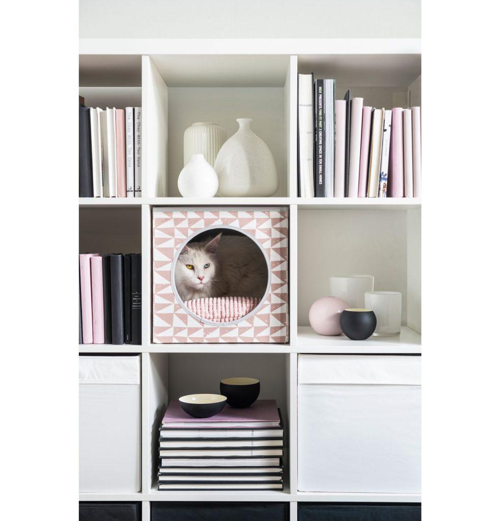 krabicový pelech pre mačku umiestnený v otvorenej skrini