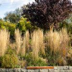 Prírodná záhrada s terasovitou časťou s okrasnými trávami, ktorú podopiera kamenný múrik z andezitu s lavičkou.