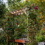 Záhrada vo svahovitom teréne s pergolou so sedením, obrastenou popínavými ružami.