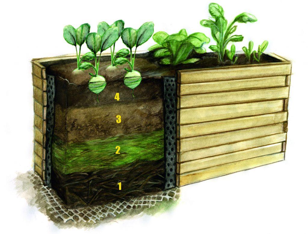Plánovanie zmien v záhrade: vrstvy vyvýšeného záhonu.