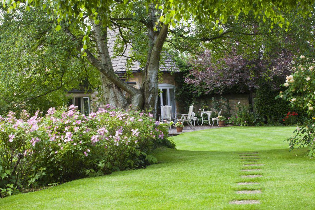 Prerábanie záhrady: záhrada s veľkým stromom, ktorý zabezpečuje tieň.