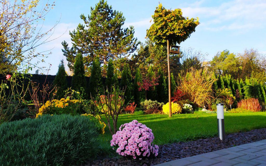 Svojpomocne vybudovaná záhrada s drevinami a trvalkami.