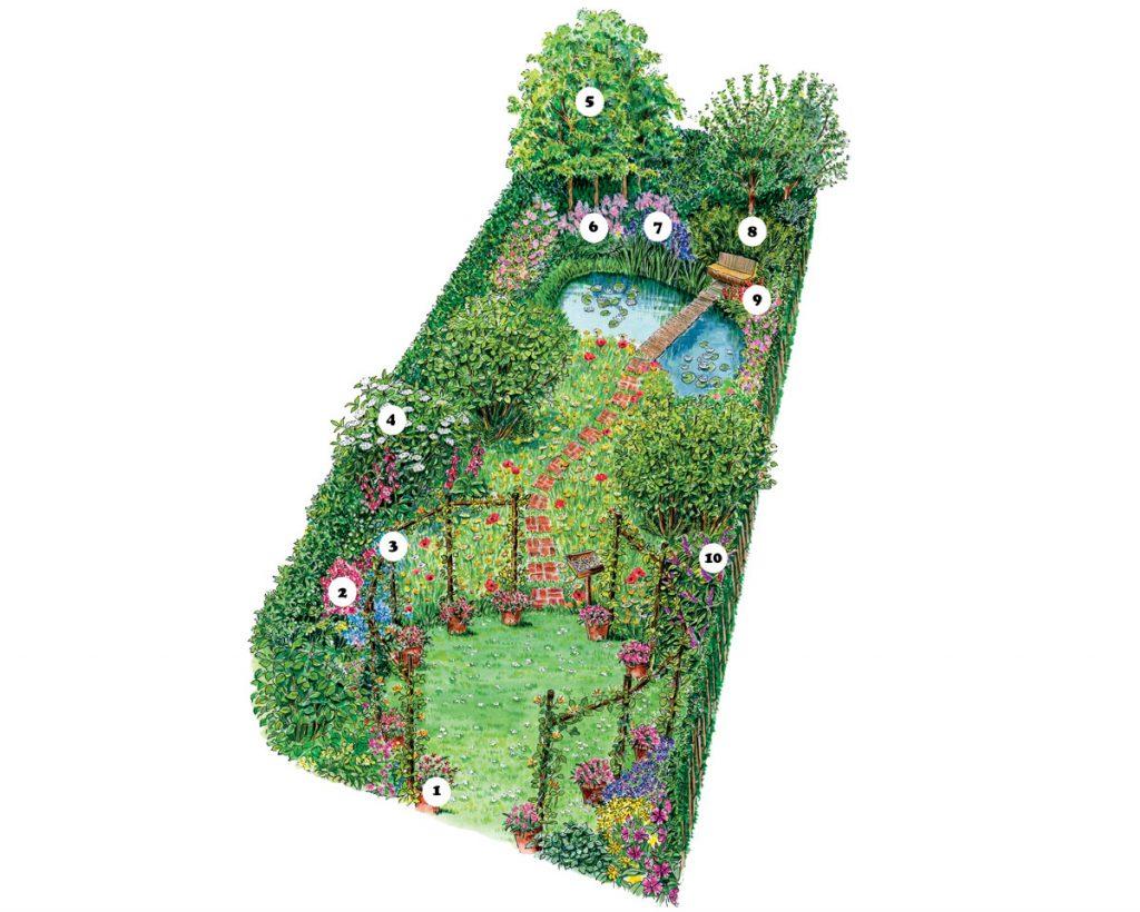 Stavba rastlín na záhrade s jazierkom