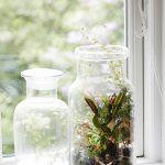 Dekorácia zo zavaráninového pohára s machom a izbovou rastlinou vnútri.