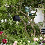 Sklené gule s elegantnou vtáčou búdkou zavesené na strom v záhrade