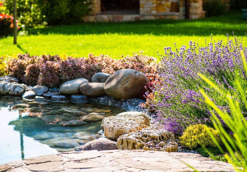 Máj v okrasnej záhrade - vysadenie brehov jazierka