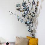 Vetva so stromu slúžiaca na vystavenie rodinných fotografií.