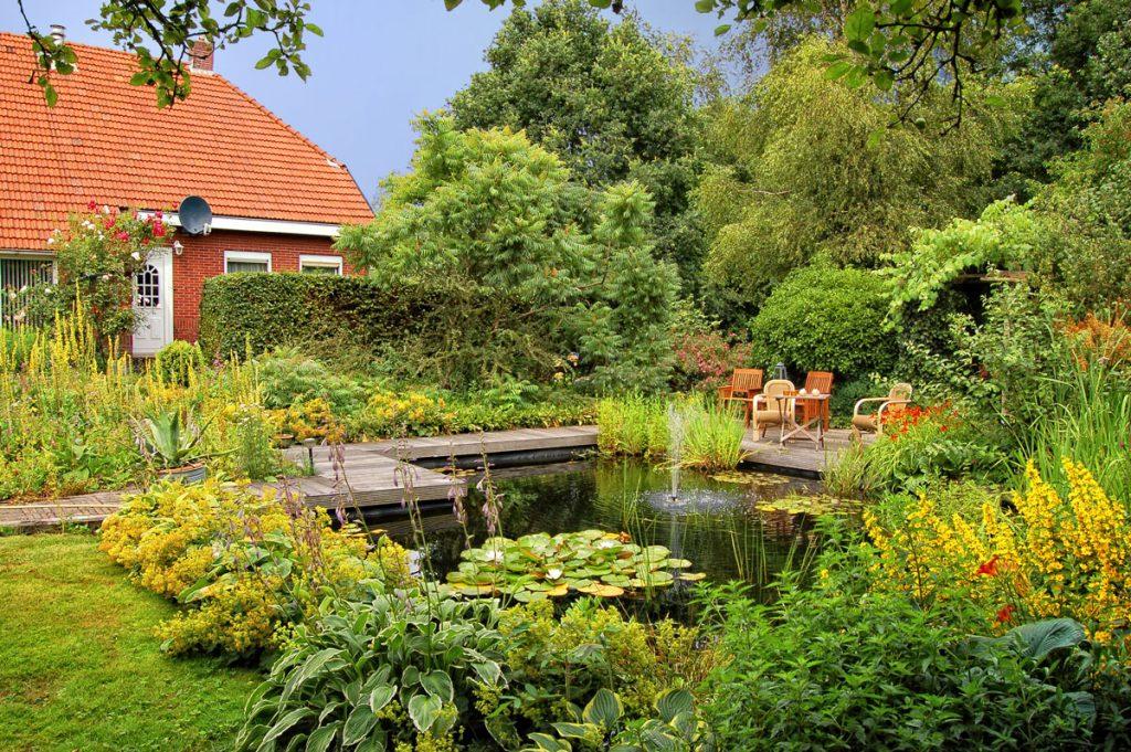 Aké druhy kvetov vysadiť okolo jazierka: rodinný dom so záhradou s jazierkom