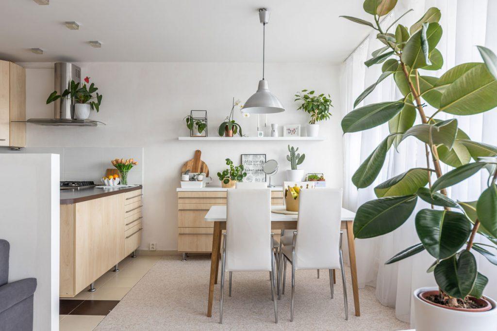 Kuchyňa s jedálňou v škandinávskom minimalistickom štýle s nábytkom zo svetlého dreva, bielym jedálenským stolom a stoličkami a s otvorenými policami