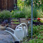 Detail vyvýšených bylinkových záhonov, kvetináčov a vodovodu v prírodnej záhrade.