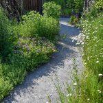 Detail mlatového chodníka lemovaného trvalkovými záhonmi.