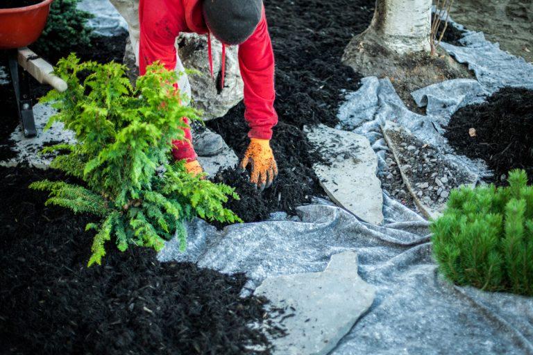 5 dôvodov, prečo by ste mali zvážiť (ne)použitie geotextílií v záhrade