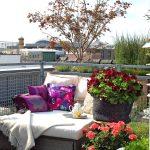 muškáty v mestskom prostredí: terasa so sedením a múškátmi v štýle Green living
