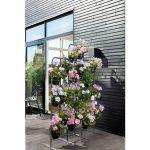 Muškáty v mestskom prostredí: kvetinová stena z muškátov na terase moderného domu