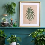 Interiér so zelenými izbovými rastlinami a obrázkom s vylisovaným listom