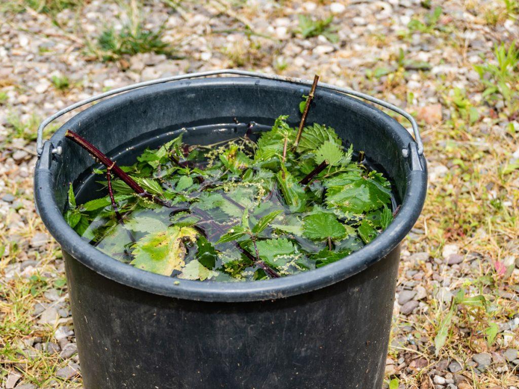 Ako vyrobiť hnojivo zo žihľavy