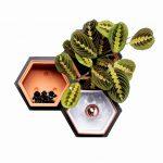 nástenný kvetináč so svetlom a s boxami z terakoty