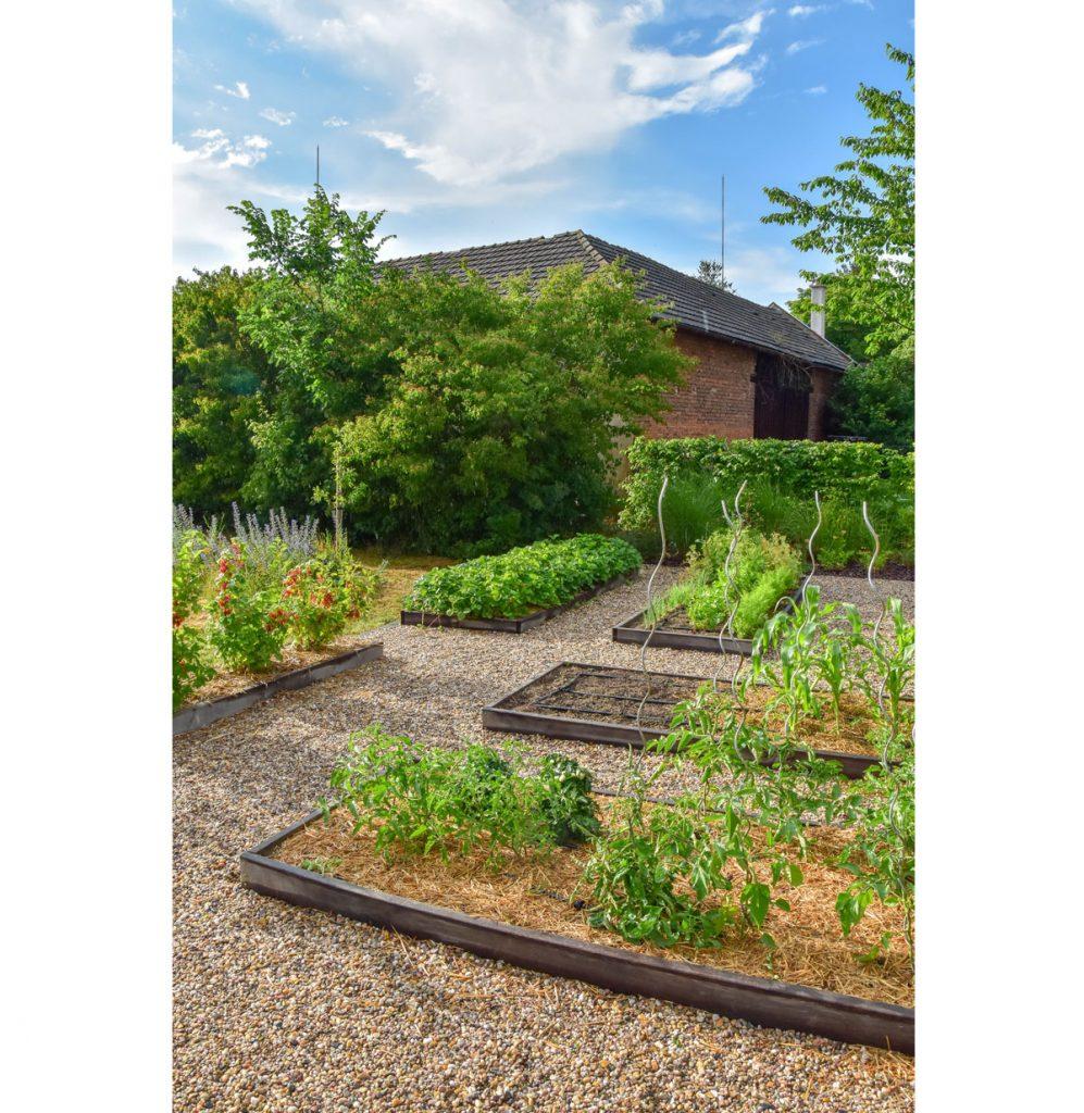 Záhradná štrková plocha s úžitkovými vyvýšenými záhonmi.