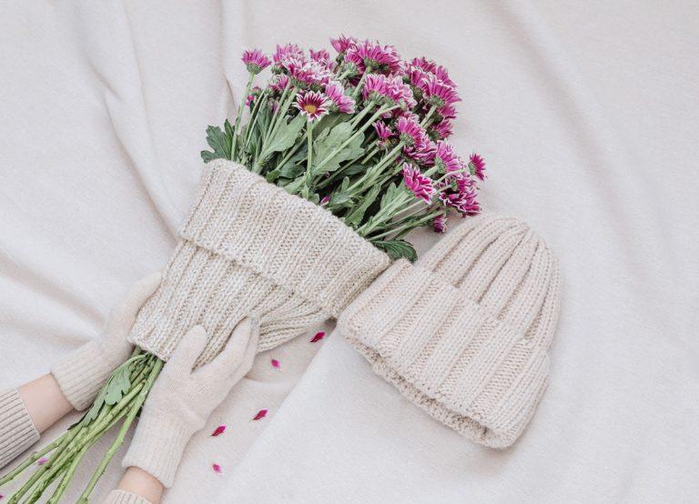 Nedarí sa vám prezimovať chryzantémy? Poradíme, ako znova nepochybiť
