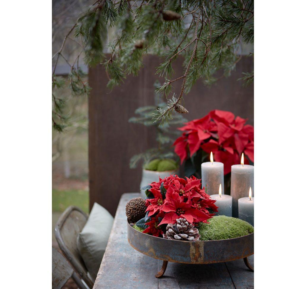Dekorovanie s vianočnou ružou: vintage dekorácia s kovovým podnosom, v ktorom sú sviečky, vianočná hviezda, mach a iné prírodniny