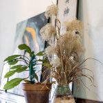 Detail izbovej rastliny a sušenej kytice na starožitnej komode umiestnenej vo vstupnej hale rodinného domu